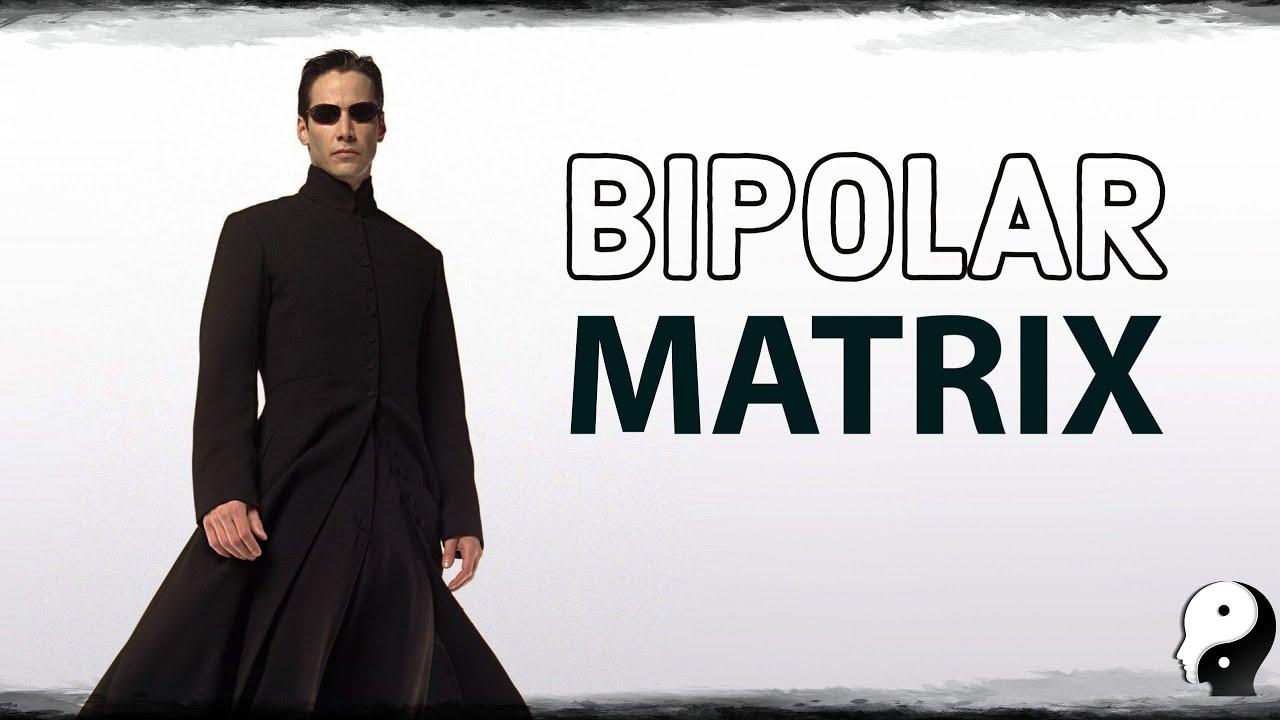 Bipolar Disorder Matrix Polar Warriors